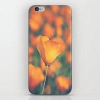 Poppyland iPhone & iPod Skin