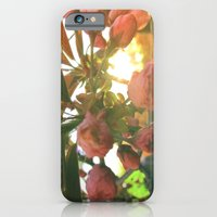 iPhone & iPod Case featuring Little Darlin' by Oh, Good Gracious!