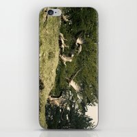 Putreak iPhone & iPod Skin