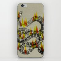 Rattlesnake On Fire! iPhone & iPod Skin