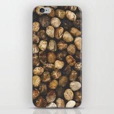 River Stones iPhone & iPod Skin