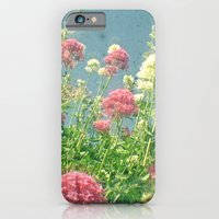 Raspberries and Cream iPhone 6 Slim Case