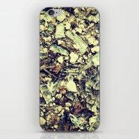 Disintegrate. iPhone & iPod Skin