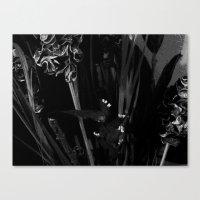 Lost In The Dark Canvas Print