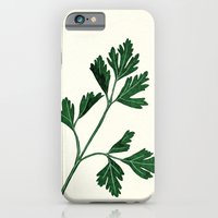 iPhone & iPod Case featuring parsely by Taylor Jean