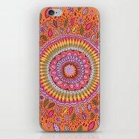 Pumpkin Bloom iPhone & iPod Skin