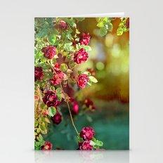 Springtime Roses Stationery Cards