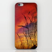 Dreaming In Color (of Th… iPhone & iPod Skin