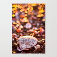 Bokeh Sprinkles Canvas Print