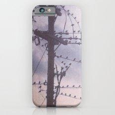 colony Slim Case iPhone 6s