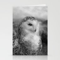 Snowy Owl - B & W Stationery Cards