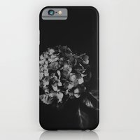 iPhone & iPod Case featuring Hydrangea by Ni.Ca.