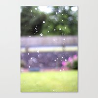 Raindrops.  Canvas Print