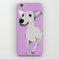 Whippet Smile iPhone & iPod Skin