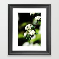 Found In The Bushes Framed Art Print