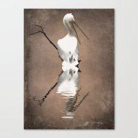 Pelican Perch 2 Canvas Print