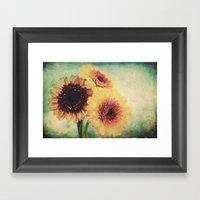 Sunny Gerbera Framed Art Print