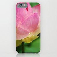 Lotus Blossom Flower 26 iPhone 6 Slim Case