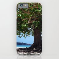 iPhone & iPod Case featuring beach tree tropic by Sheana Firth