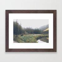 Morning Meadow Moose Framed Art Print