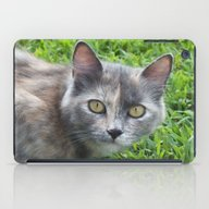 Blue Cream Tortoiseshell… iPad Case