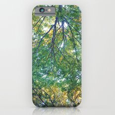 forest 013 Slim Case iPhone 6s