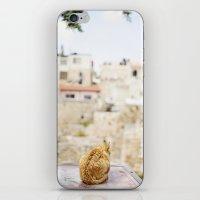 Cat Overlooking Ancient … iPhone & iPod Skin