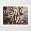Pink fade to winter  Art Print