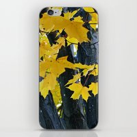 gold and black forest iPhone & iPod Skin