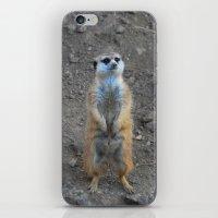 Prairie Dog iPhone & iPod Skin