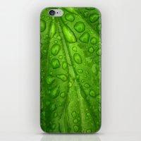 green verde vert grün iPhone & iPod Skin