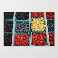 organic fruit Canvas Print