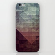 fylk iPhone & iPod Skin