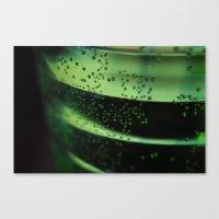 A Look Through The Glass Canvas Print