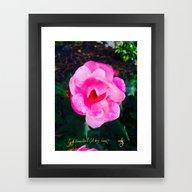 Pink Roses Don't Get Any… Framed Art Print