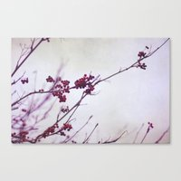 Winter Song In Purple An… Canvas Print