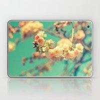 Pink Blue Blossom Laptop & iPad Skin