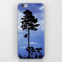 Trees In Silhouette iPhone & iPod Skin