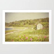 Cape Shack Art Print