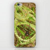 The Widow iPhone & iPod Skin