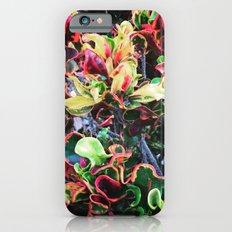 Fun Foliage iPhone 6 Slim Case