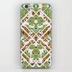 Dandy Lions iPhone & iPod Skin