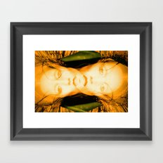 Beauty in things exists merely in the mind which contemplates them, Double Vision Framed Art Print