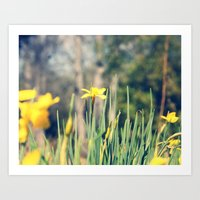 First Hint Of Spring Art Print