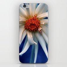 monday morning iPhone & iPod Skin