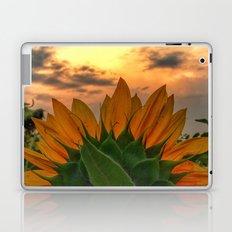 sunflower in the sunset Laptop & iPad Skin
