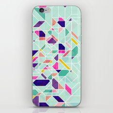 GeoLine iPhone & iPod Skin