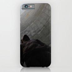 No. 3756 iPhone 6s Slim Case