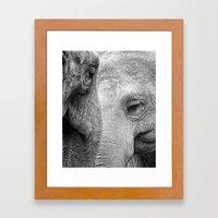 A pair of Pachyderms Framed Art Print