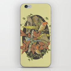 Robins and Warblers iPhone & iPod Skin